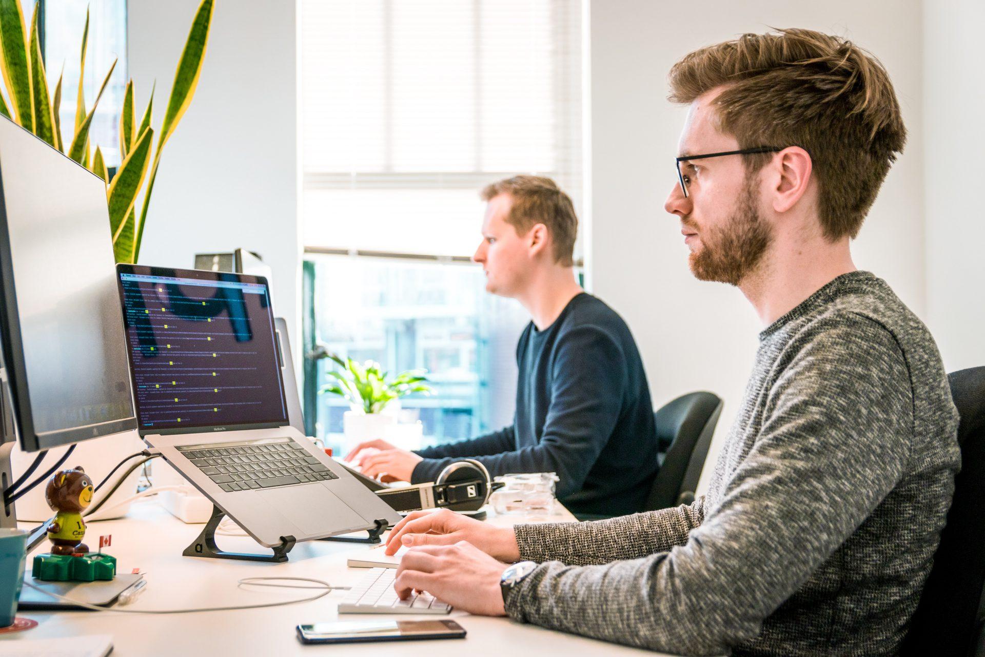 tworzenie oprogramowania programiści